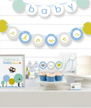 Blue Owl Baby Shower Party in a Box