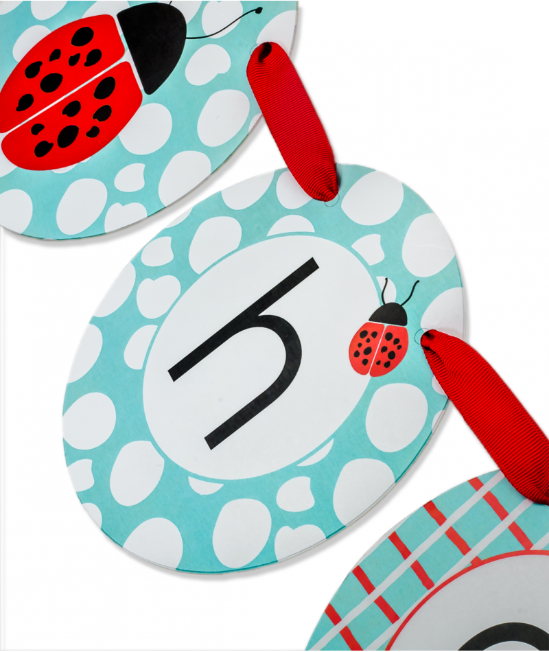 ladybug birthday party banner